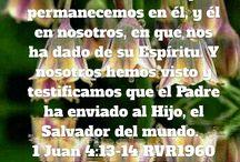 TEXTOS BIBLICOS / textos seleccionados de mis devocionales para bendecir a quien quiera tomarlos.