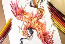 Phoenix and phoenixes