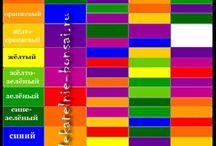 Цветовые сочетания / Сочетания цветов в одежде