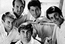 The Beach Boys /   Brian Wilson  Carl Wilson ✞  Dennis Wilson ✞  Mike Love  Al Jardine  Bruce Johnston  and David Marks  / by Paige