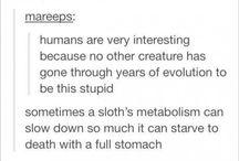 sloth :( :)