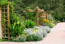 Community Garden Ideas