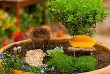 Fairy Garden's / http://marveena.com/blog/7-steps-create-fairy-garden/