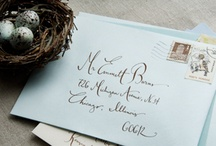 Calligraphy ideas / by Christine