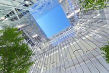 Progetto per uffici / Concorso ad inviti per la ristrutturazione di una sede amministrativa a Milano