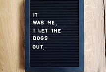 Home: Letter Board Quotes