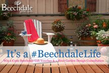 #BeechdaleLife Garden Snaps Competition / Take a snap of your favourite place in the garden. Any garden - it can be your garden, a friends garden or a public garden. Be creative, consider a close up of a flower, insect or a snap of your pet! Make it a selfie or simply share a panoramic view of your gorgeous garden.Submission period ends at Midnight on (Bank Holiday) Monday 02nd May 2016. On Instagram or Twitter? You can enter by posting your garden snap with the hashtag #BeechdaleLife