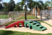 Dog Playgrounds