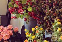 Autumnal inspiration