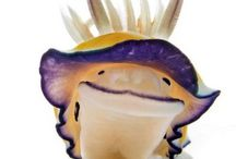 nudibranches / pokemons alive
