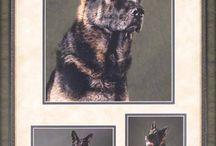 Pets Custom Framed