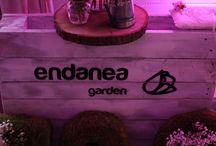 Evento Bodas / Endanea en colaboración con Sunday Atelier ha organizado una jornada dedicada al tema de las bodas.