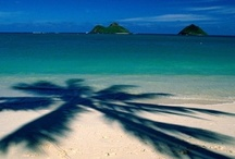 Me Ke Aloha / by Shannon Viegas