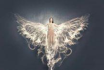 Angeli / Il mio libro