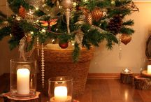 WINTER / After the Christmas décor comes down, ideas for decorating the home to enjoy Winter. / by Gigi Smith Pedersen