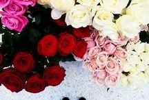 In Bloom / In honour of Chelsea Flower Show we have created a board full of flowers in bloom taken from our #JWProperBritish Photo Challenge. http://www.jackwills.com/en-gb/ladies/in-bloom / by Jack Wills