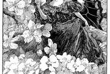Transfer - Anioły, elfy