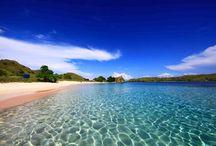 6 Plaje ROZ ale lumii / Dacă vrei ca vacanţa ta de vară din acest an să aibă un farmec aparte, atunci cea mai bună soluţie este să optezi pentru una dintre frumoasele plaje cu nispuri roz.