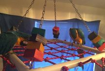 Parrot Aviaries and Toys / Different parrot aviaries and toys