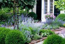 Garden /Garten