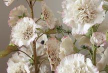 Kanevsky Eternal Flowers Edition