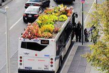 Bus stops / by Karen Colville