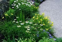 plán zahrada
