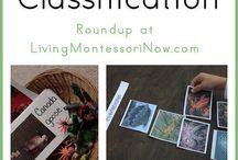 montessori specific / by Courtney Scheid