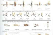 Fly TYing Theory