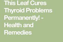 Thyroid glande