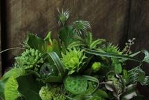 Art floral compositions