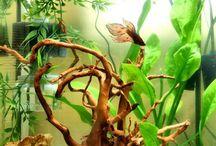 akvaario sisustus ideoita