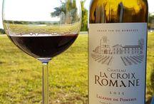 vins a decouvrir / vins pas ou peu connus. wines to discover