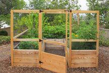N&C Vegetable Garden