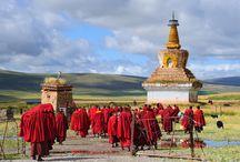 Tibet & Nepal Reisen / Kombinieren Sie die Höhepunkte Tibets und Nepals und lassen Sie sich auf Ihrer Reise von den beiden Kulturräumen beeindrucken.