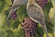 Decoupage birds