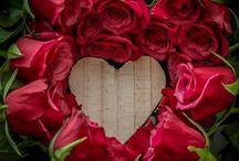 hjerter