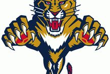 Florida Panthers / Official NHL Apparel for the Florida Panthers. T-Shirts, Sweaters, and more featuring the team's top stars.
