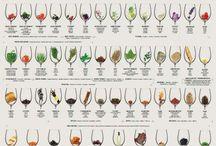 Wine perception