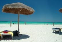 HOTELES EN TÚNEZ / Deja que te envuelva el exotismo de #Tunez.  Elige tu mejor oferta de #hotel en Quierohotel.com http://www.quierohotel.com/hoteles-tunis-carthage-coast-1A1T179.htm