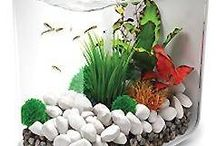 BiOrb Aquariums  / The biOrb are a stylish fish bowl incorporates a clever and easy to change filtration system that has been designed to provide maximum benefits to both fish and fish keeper. They are the perfect addition for in your home. www.gardensite.co.uk/Aquatics/biOrb_Shop/