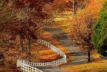 Amazing places  / by Kelli Bozworth