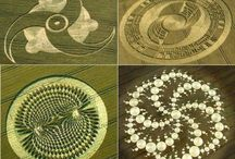 Crop Circle Art... / The mystery of these elaborate designs continues... / by Bill Shattuck