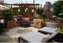 Rooftop garden & deck