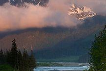 Alaska's beauty's / by Nancy Allen