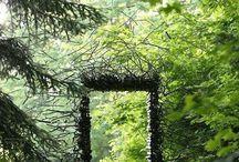 piha&luonto