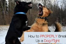 Pup tips