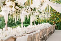 Draping and Ceiling Elements