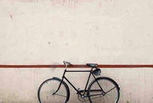 Cycling Love / by Sofia Whitcombe