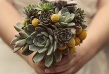 Flowers / by Jessica Plowman